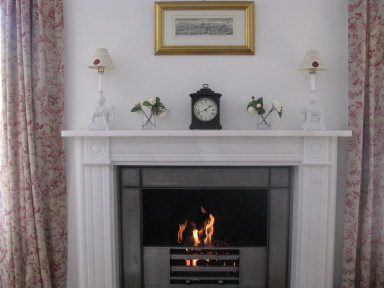Bluebird Cottage - The fireplace - larger image